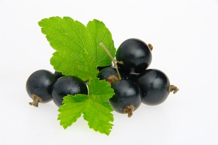 blackcurrant: black currant isolated 03 Stock Photo