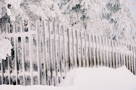 Erz: fence in winter Stock Photo