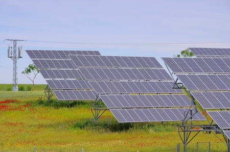 solar plant on field  photo