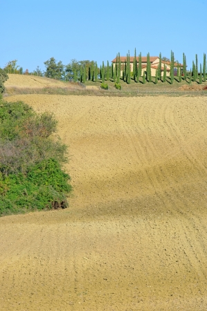 Podere in fall 24 photo
