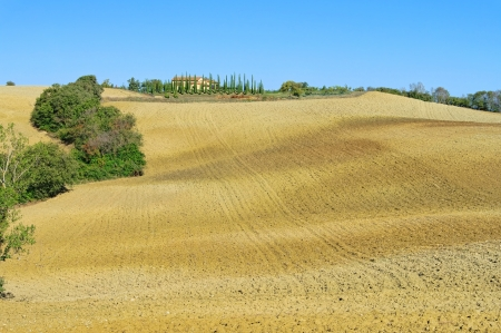 podere: Podere in fall