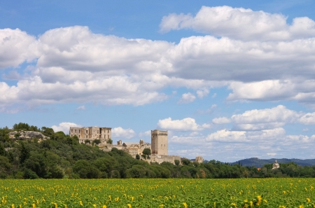 abbaye: Abbaye de Montmajour   Editorial