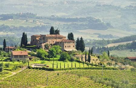 podere: Tuscany vineyard