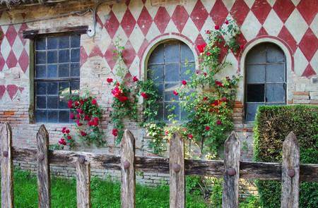 emilia romagna: Grazzano Visconti fence and roses  Editorial