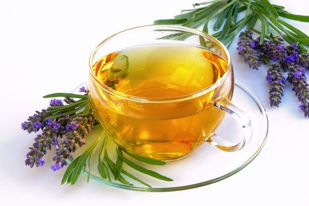 lavender tea 写真素材
