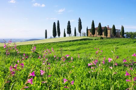 blumen: Toskana Haus mit Blumen - Tuscany house and flowers 02
