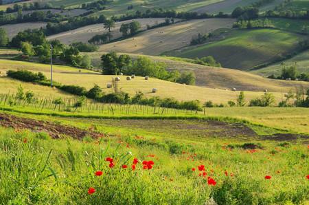 emilia romagna: Emilia landscape