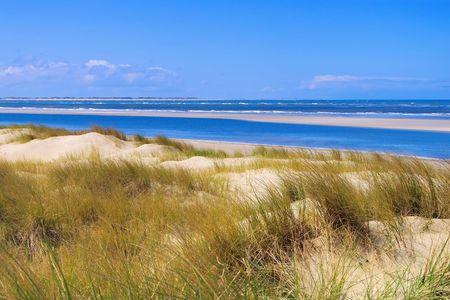 dune: Langeoog Dune