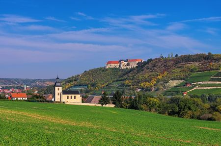 castle: Freyburg in Saale-Unstrut wine-growing area