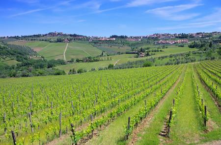 podere: Panzano in Chianti