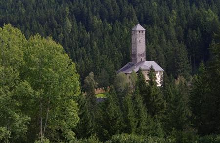 alto adige: in alto Adige, the castle Welsberg Editorial