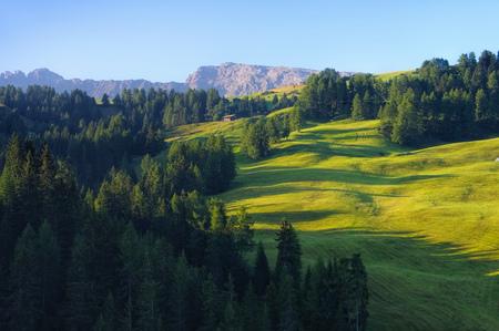 alto adige: landscape near mountain Schlern in Alto Adige, italian Dolomites
