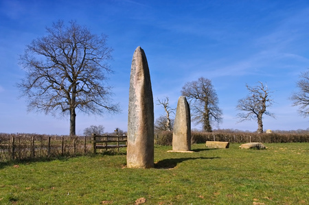 couches: Menhirs d Epoigny in France near Couches