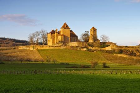 Chateau Pierreclos in Burgundy, France
