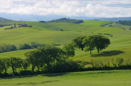 feld: Toskana Huegel  - Tuscany hills Stock Photo