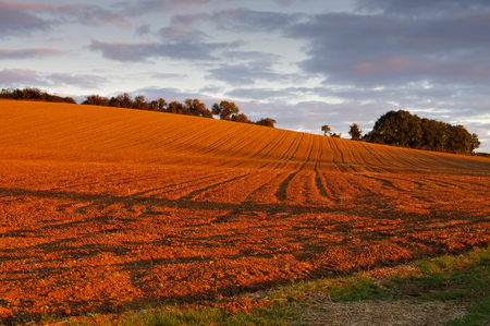 plowed field and hills in the evening light
