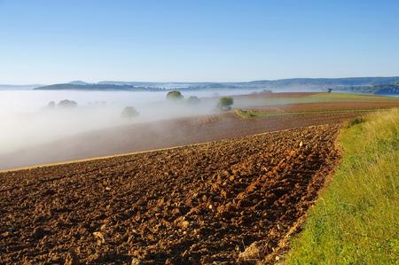 Burgundy landscape in morning mist, France
