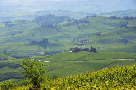 Langhe vineards and villages Stock Photo
