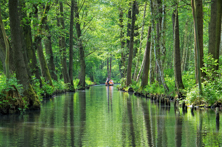 Spree Forest  water canal, landscape in  Brandenburg
