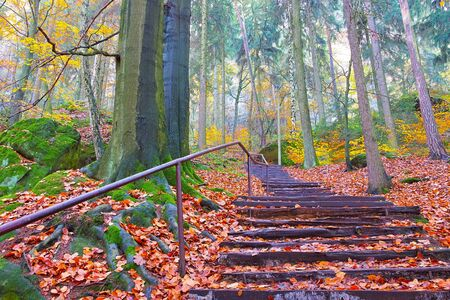 Stairs to the Pfaffenstein in the Elbe sandstone mountains in autumn 免版税图像