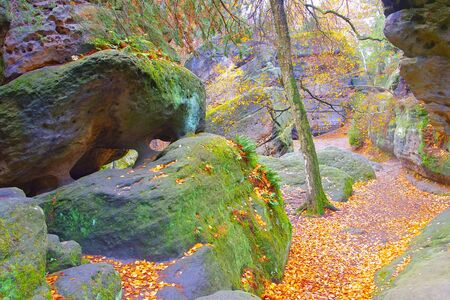 so called Labyrint in the Elbe sandstone mountains in autumn 写真素材