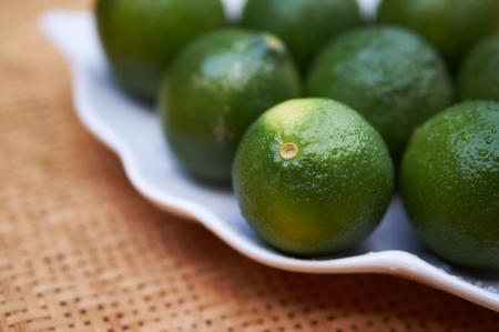 harmless: lime Stock Photo