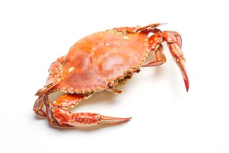 Steamed crab Фото со стока