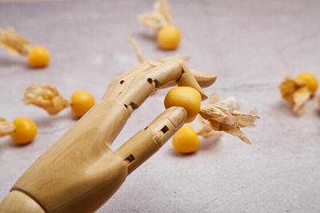 Hand holding cape gooseberry
