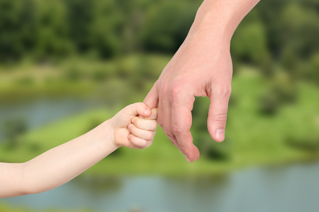 adult hand: Father holds the hand of a small child on a white background