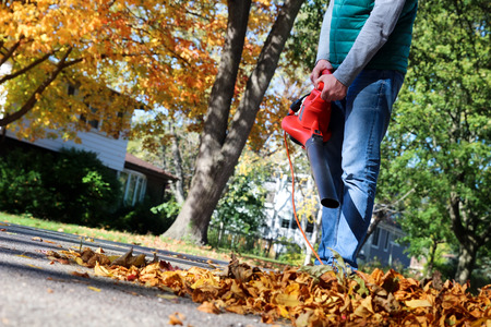 Man working with  leaf blower: the leaves are being swirled up and down on a sunny day Stock Photo