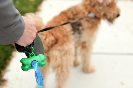 男が拾う犬のフンをクリーンアップ
