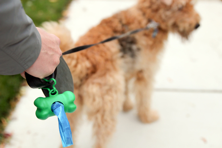 Man  Picking up  cleaning up dog droppings Stock Photo