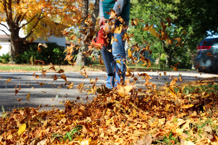Man working with  leaf blower: the leaves are being swirled up and down on a sunny day Фото со стока