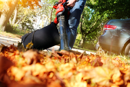 Man working with  leaf blower: the leaves are being swirled up and down on a sunny day Banque d'images