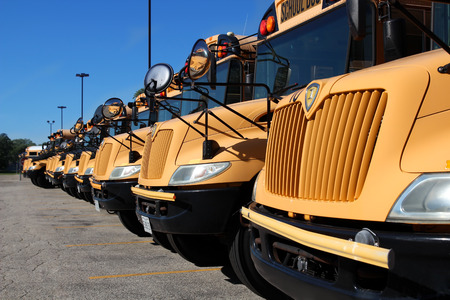 The raw of yellow school buses