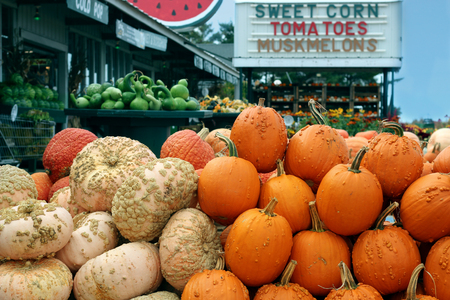 Ripe Pumpkins in a market Stock Photo