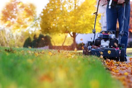 Mowing the grass with a lawn mower in sunny autumn. Gardener cuts the lawn in the garden Stok Fotoğraf