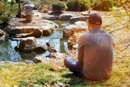 man is sitting near the pond with duck in the botanic park