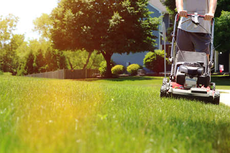 Mowing the grass with a lawn mower in sunny summer. Gardener cuts the lawn in the garden