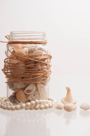 margarite: Seashells in a glass container