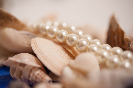 Seashells with pearl necklace Stock Photo