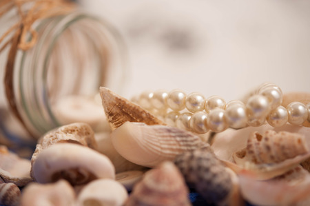 margarite: Close up to seashells and pearl necklace  Stock Photo
