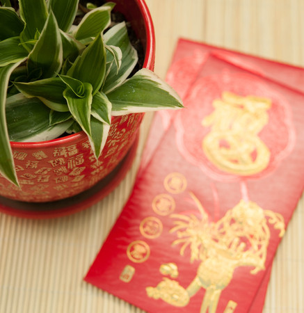 goodluck: this can be used as background of Chinese New Year