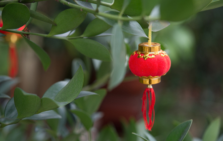 small and cute Chinese lantern
