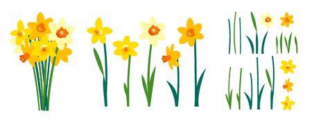 Vektorsatz positive Blumenillustrationen lokalisiert auf weißem Hintergrund. Vorfrühlingsgartenblumen. Strauß gelber Narzissen. ClipArt für helle festliche Grußkarten, Poster, Banner. Frauentag