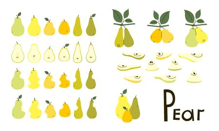 Pears whole, cut, bitten. Pear half and slices. Pear tree branches with leaves. Set of vector objects in yellow, green, orange colors isolated on white. Positive flat design. Cartoon style. Clip art