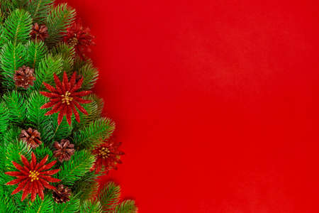 postcard from the branches of Christmas tree with pine cones and brilliant red flowers on scarlet background, copy space Stock fotó