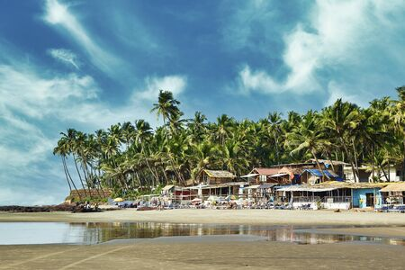 Beautiful tropical beach with palms in Goa.