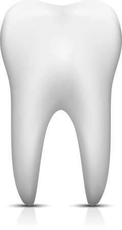 Vector tooth isolated on white background.