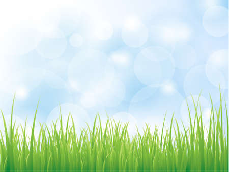 Vector background with green grass
